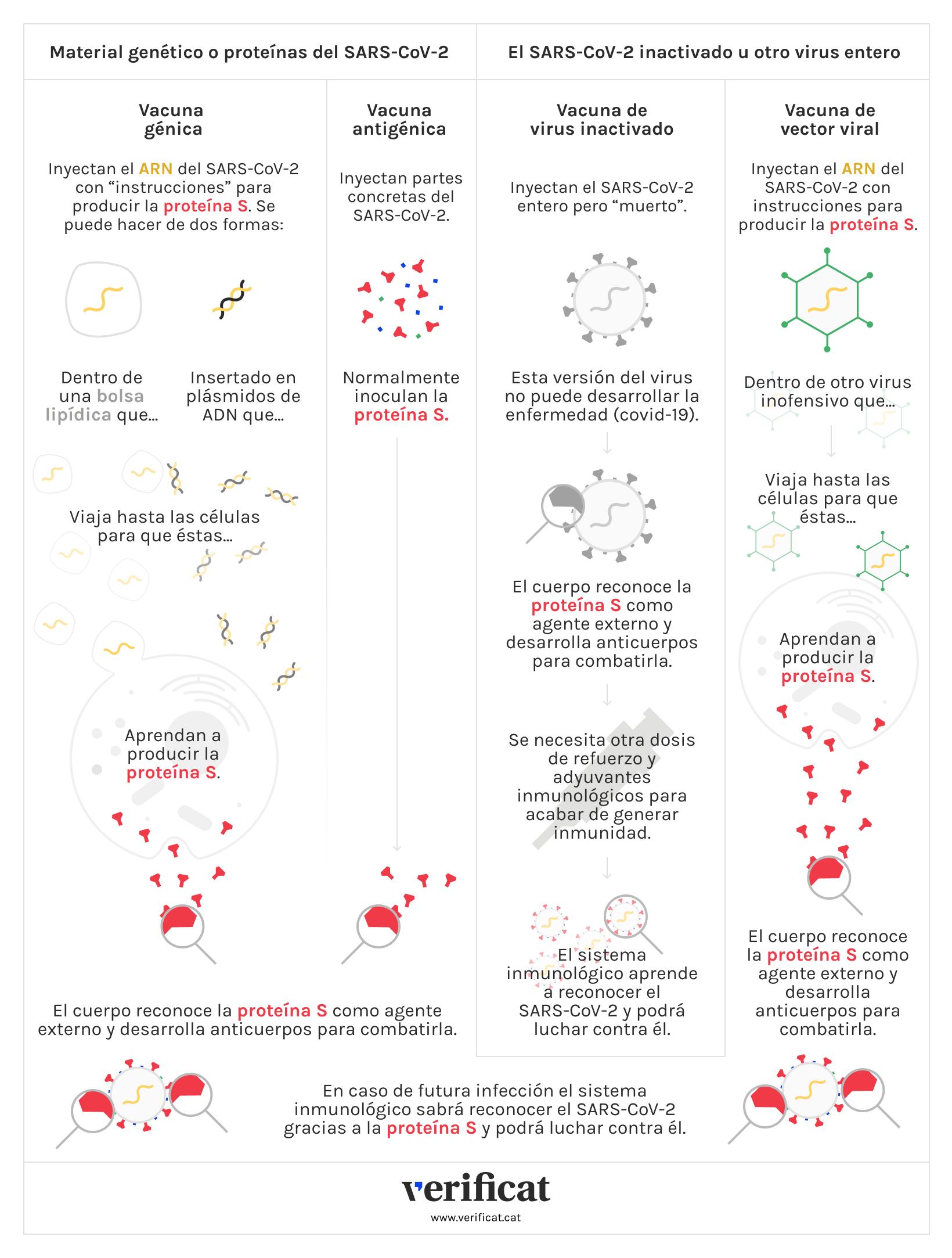 Infografía que muestra los diferentes tipos de vacunas que existen contra la covid-19