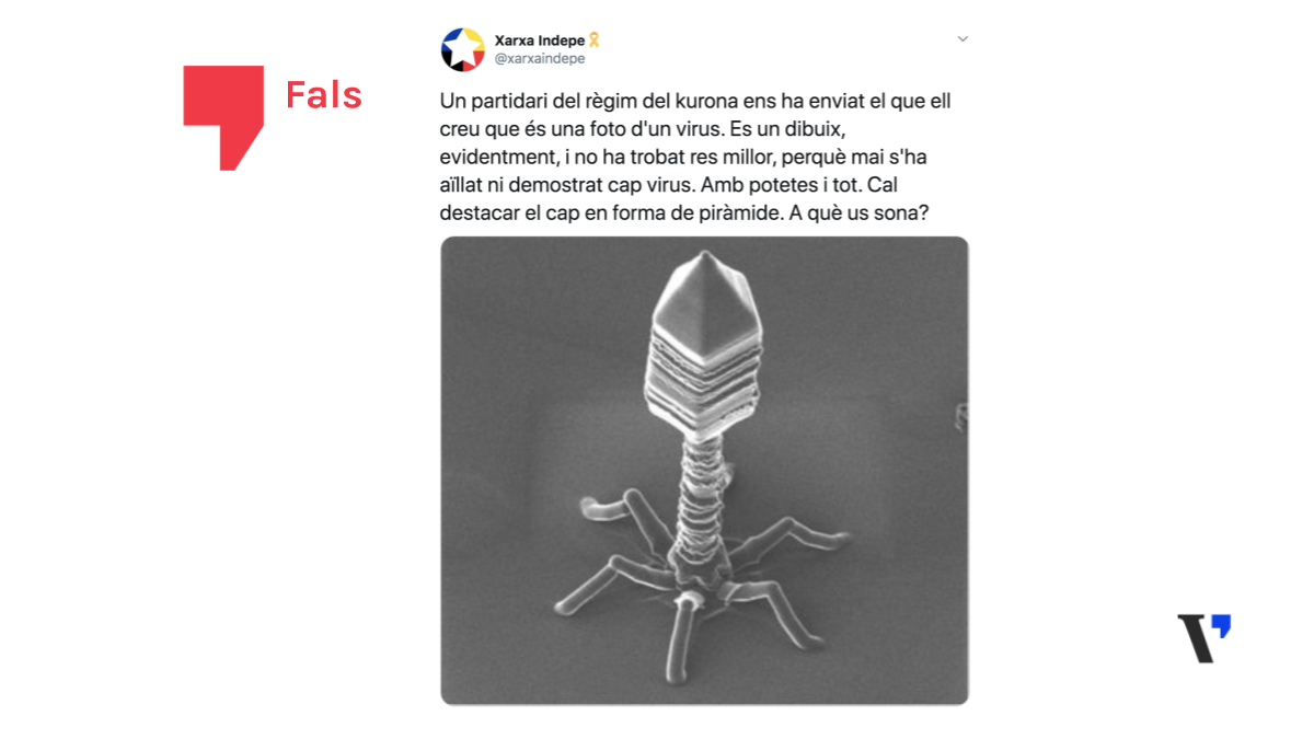 És fals que mai s'hagi aïllat un virus i que no es puguin fotografiar