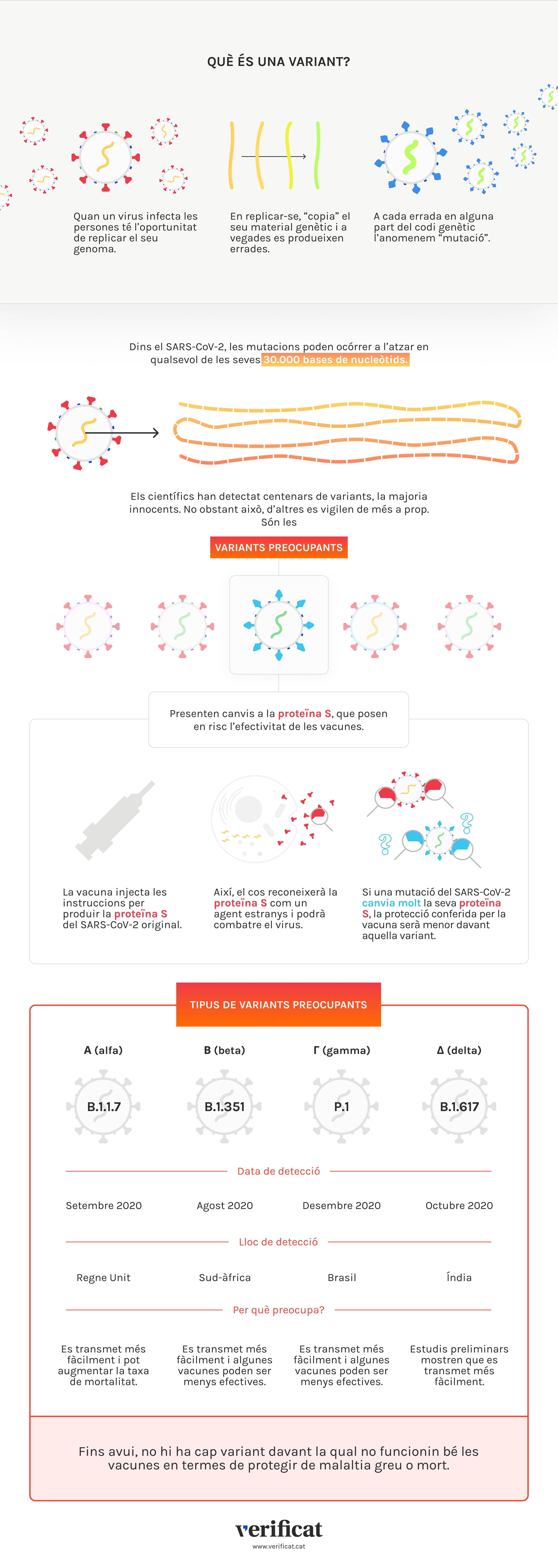 Infografia que explica l'aparició de les variants del SARS-CoV-2